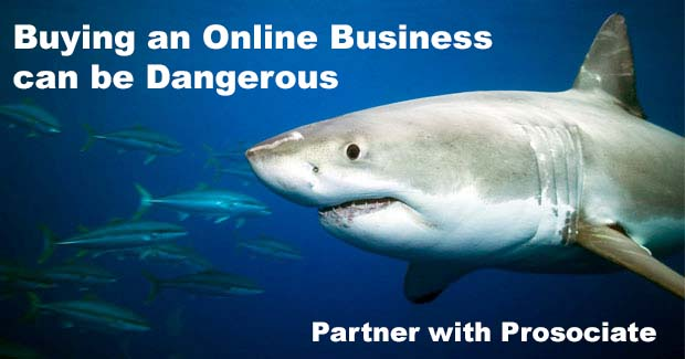 Website Buyer Agent – Don't Swim Alone