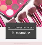 bh cosmetics affiliate program