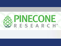 pineconeresearch-surveys