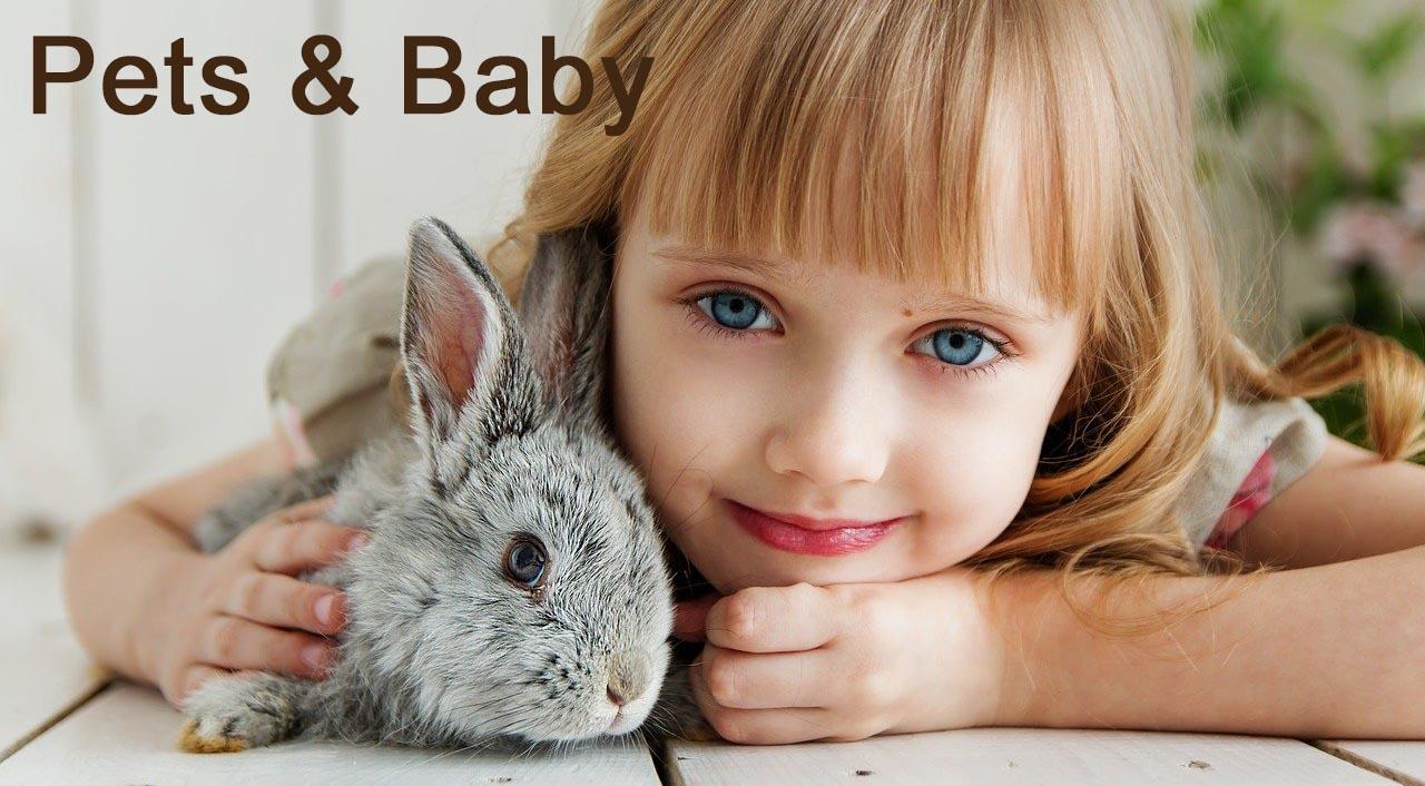 Pet & Baby Niches